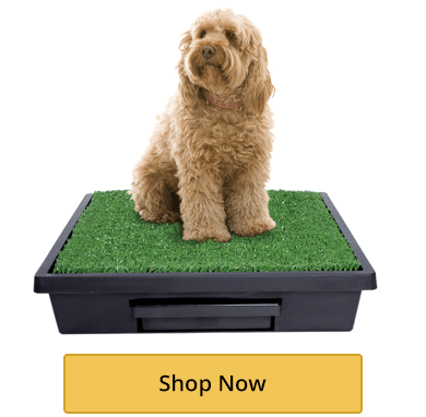 The Pet Loo Dog Toilet