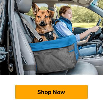Car Booster Seats