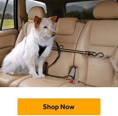 Seatbelt Adapters