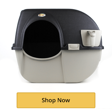 All Cat Litter Boxes