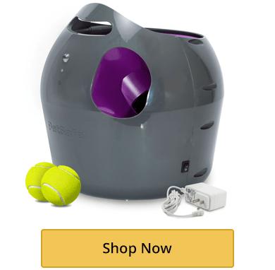 Ball Launching Toys