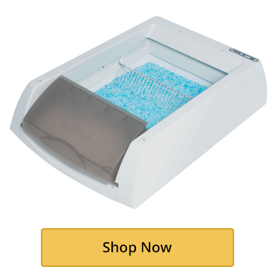 Self-Cleaning Boxes