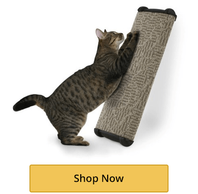 Scratching Posts and Pads